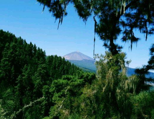 Wanderung von La Caldera nach Pinolere auf Teneriffa