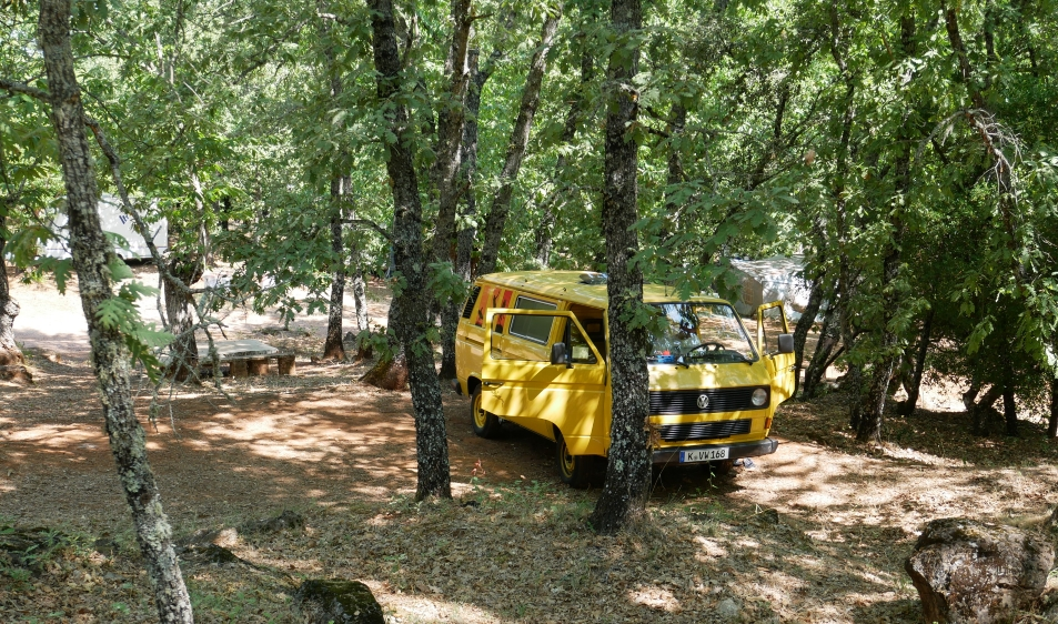 VW Bus im Kastanienwald bei Aracena in Spanien