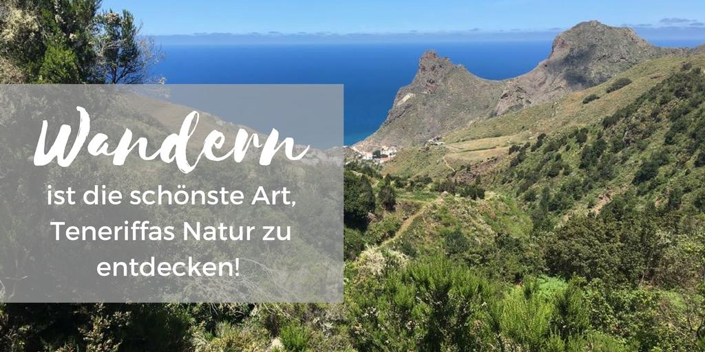 Wandern ist die schönste Art, Teneriffas Natur zu entdecken