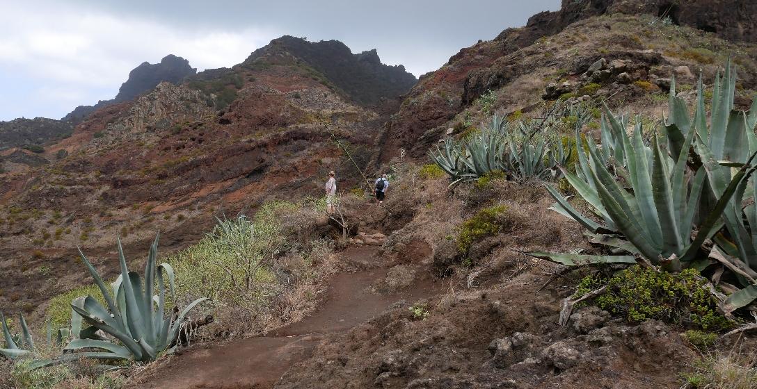 Die Wanderwege auf Teneriffa sind gut ausgebaut