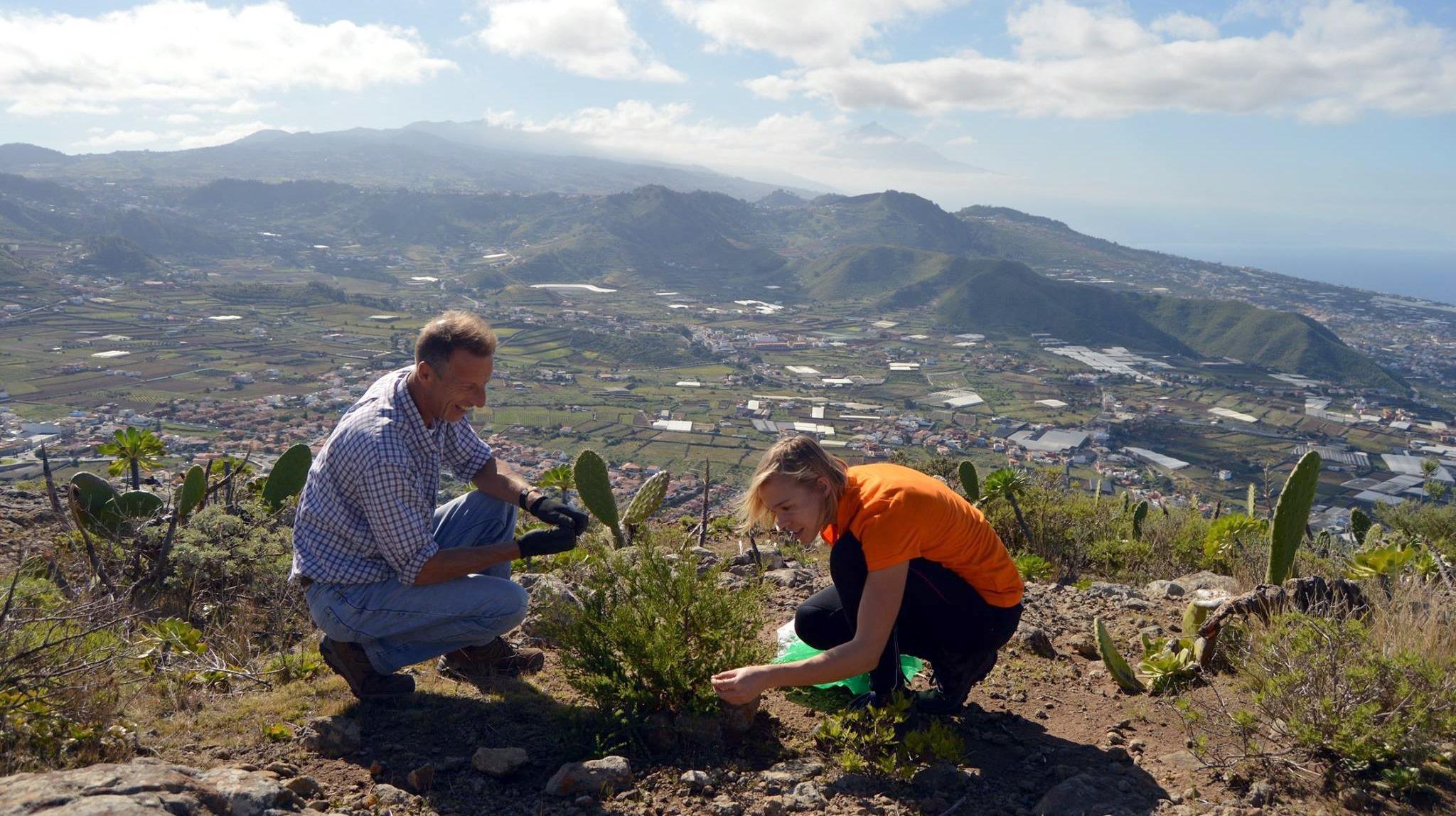 Tanja arbeitet als Auswanderin auf Teneriffa als Tourguide.