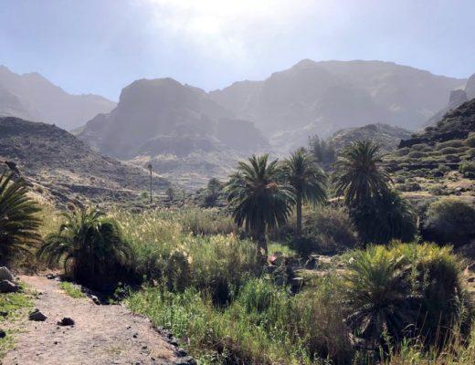 DIe wilde Seite Gran Canarias