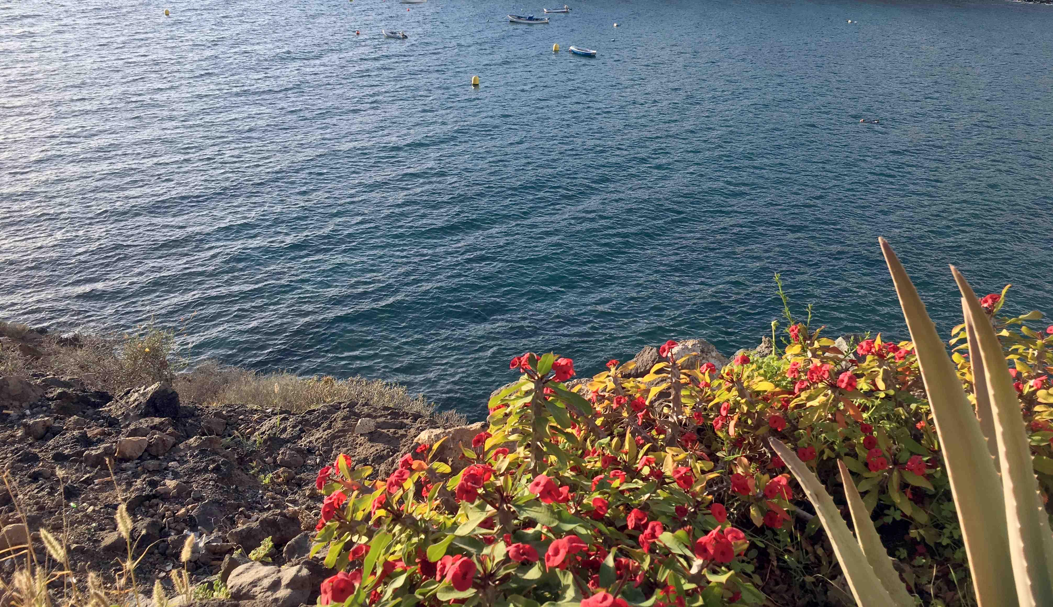 Teneriffa ist ein schöner Ort zu leben.