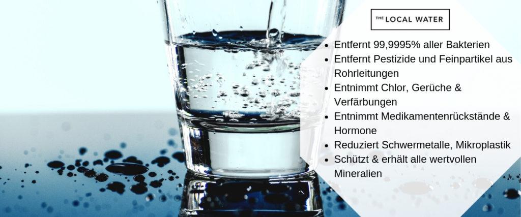 Die Vorteile eines Wasserfilters (The Local Water)