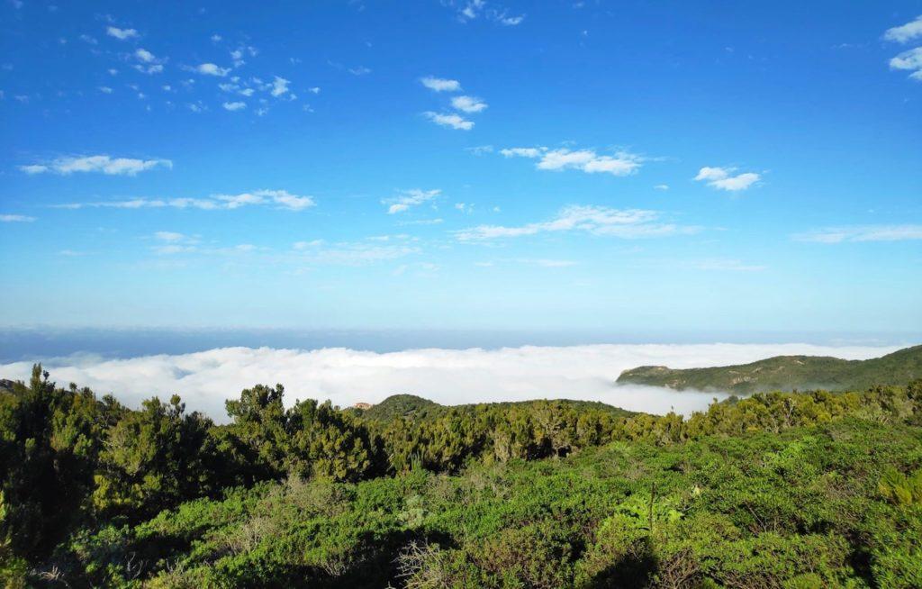 Wandern über den Wolken auf Teneriffa im Teno Gebirge